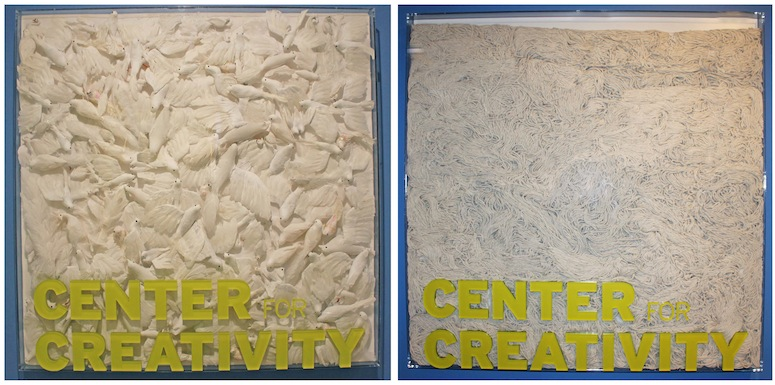 The Center for Creativity signs filled with birds and string mops.