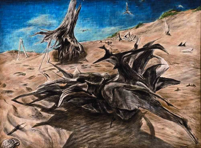Zoltan Sepeshy - Driftwood
