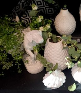 white-vases-and-planter
