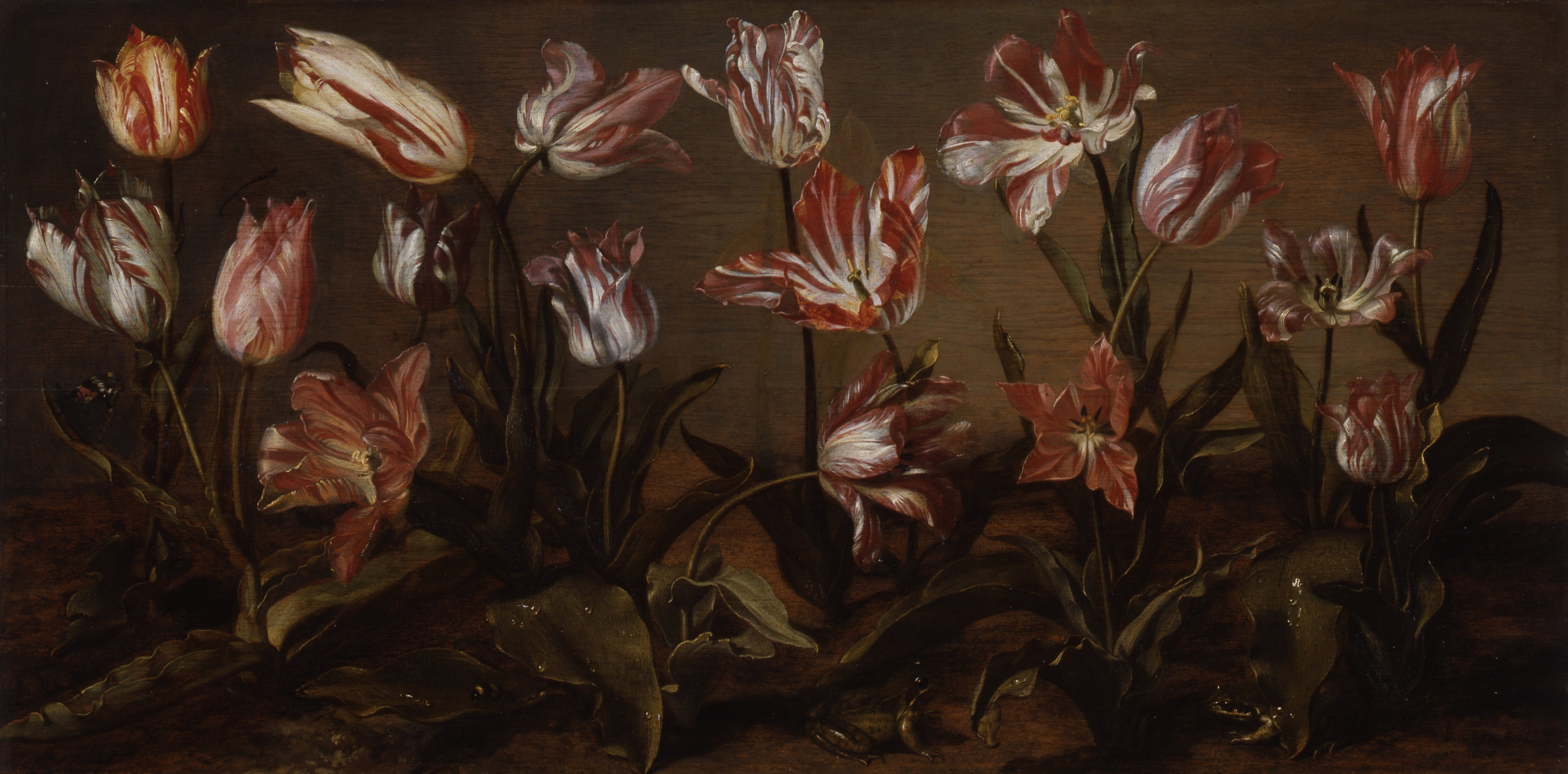 Jacob Gerritsz Cuyp, Bed of Tuilps, 1638, Collection of the Dordrecht Museum