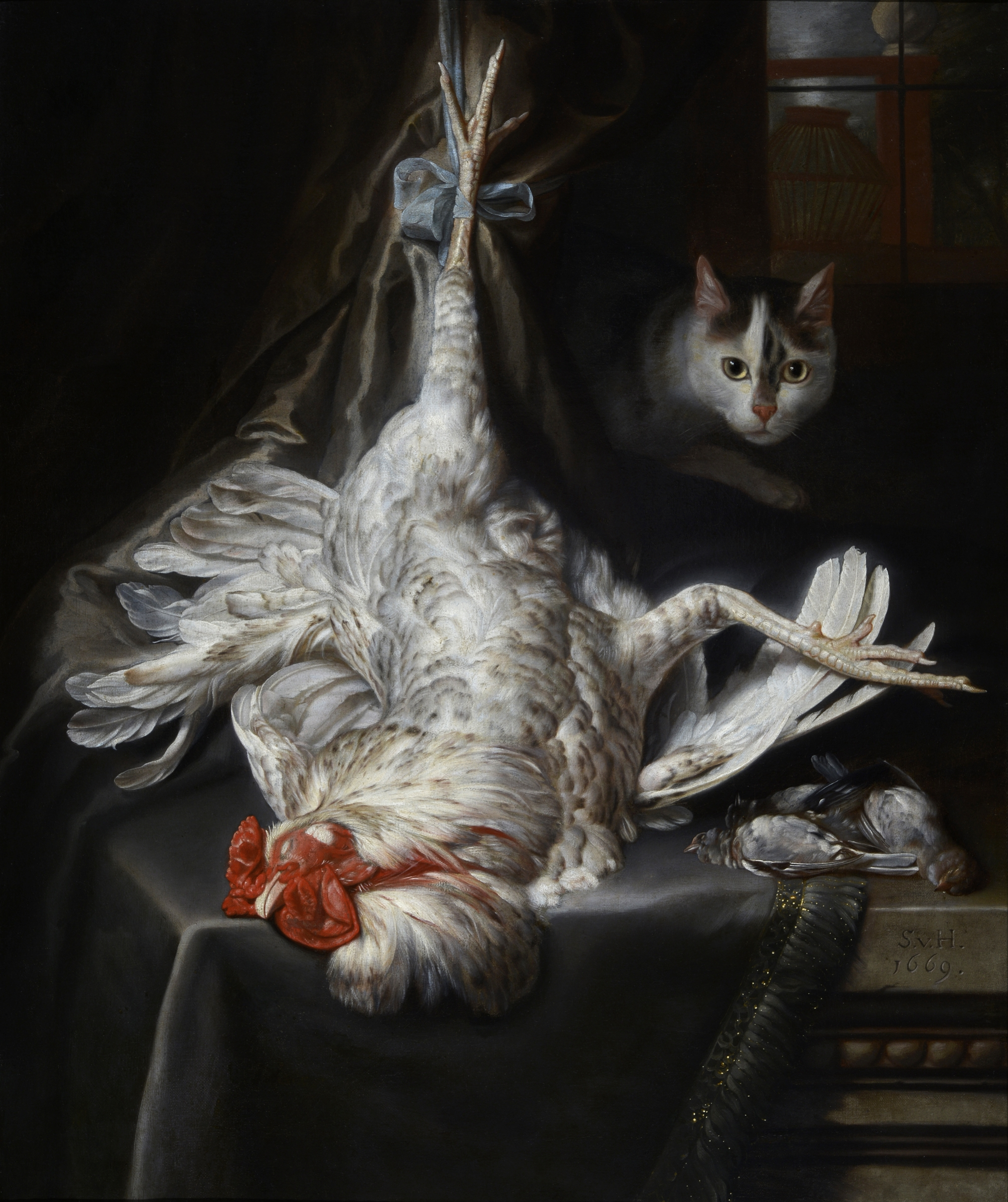 Samuel van Hoogstraten, Bird Still Life with Cat, 1669, Collection of Dordrecht Museum