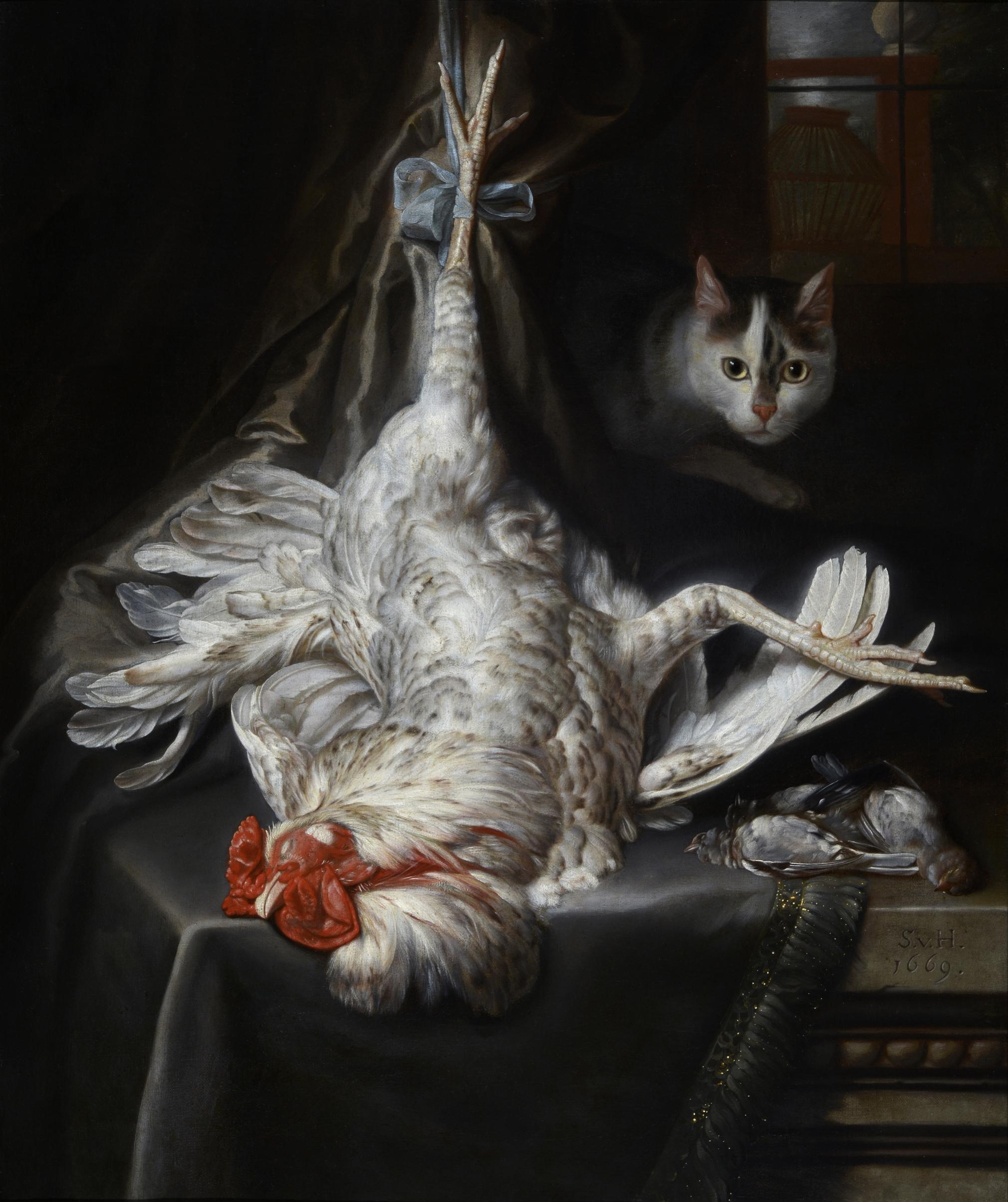 Samuel van Hoogstraten, Bird Still Life with Cat, 1669, Collection of Dordrecht Museum