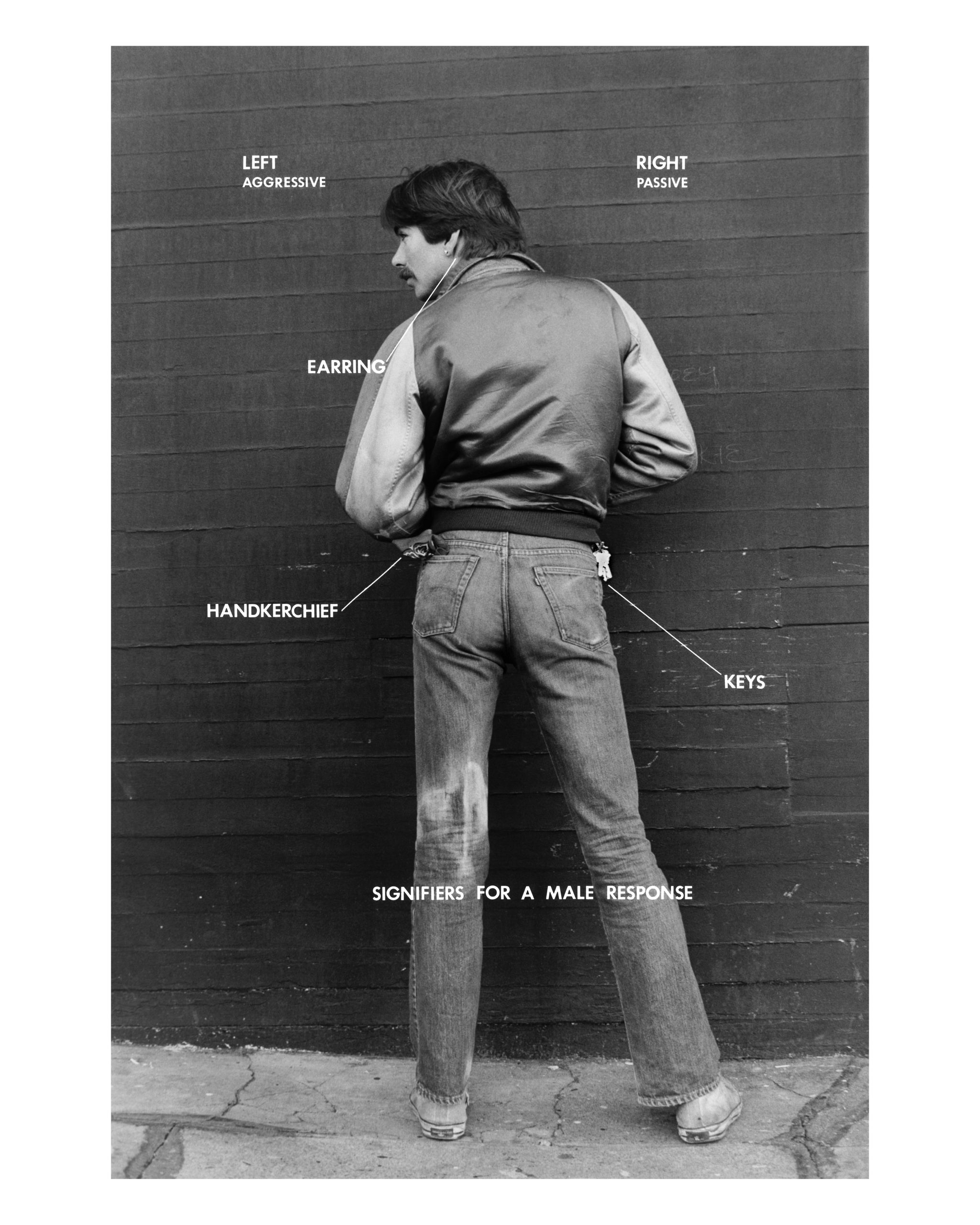 Hal Fischer, Signifiers for a Male Response