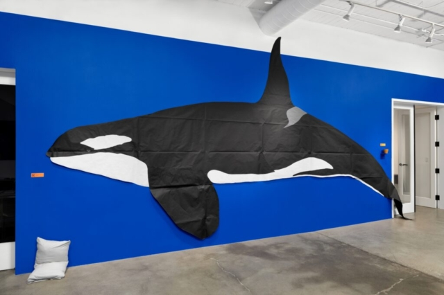 Nina Katchadourian, installation of To Feel Something That Was Not of Our World , Whale, 2020. Room 1 of 2 at Catharine Clark Gallery, San Francisco. Photo: John Janca