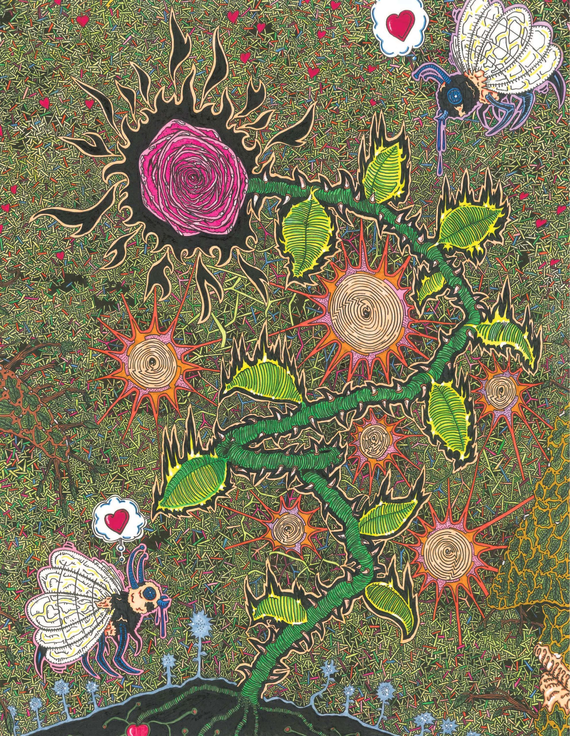 Steve Jebbett - Drooling over the Petals
