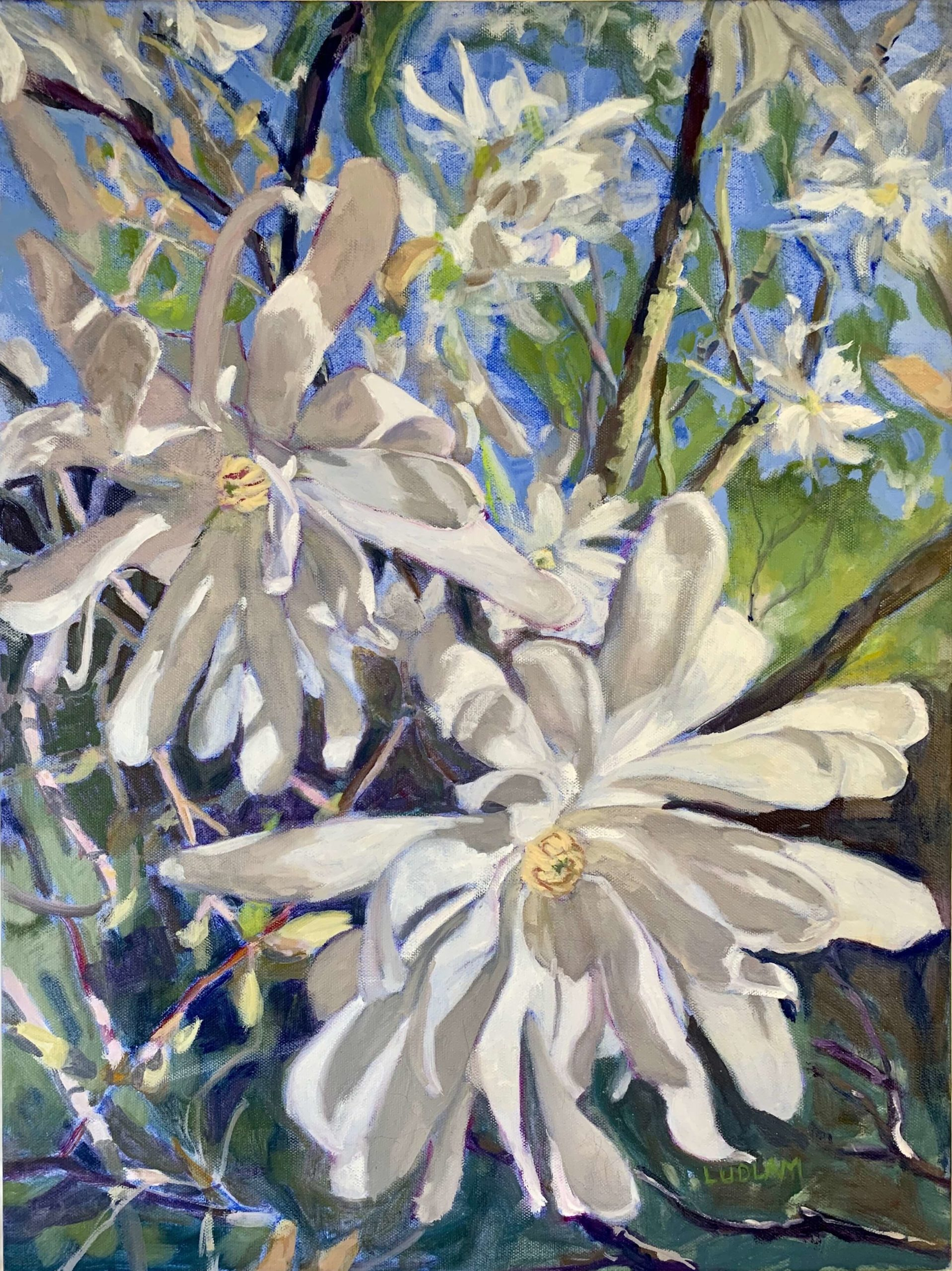 Kathy Ludlam - Spring Is In The Air