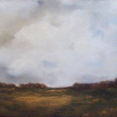 Suzanne Robinson - Ohio Fallow Field