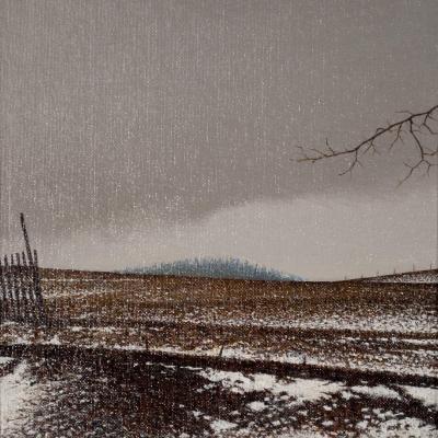 Alan Gough - Snow Fence