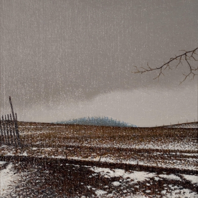 Alan Gough - Snow Fence